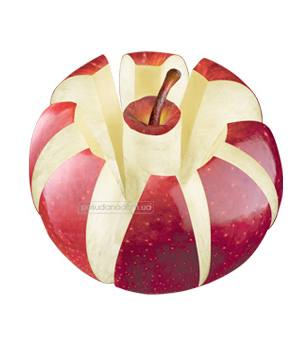 Нож для яблок Tescoma 420660 PRESTO, недорого